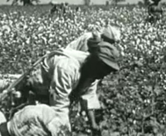A Jim Crow View of the Southern Plantation System - The ...