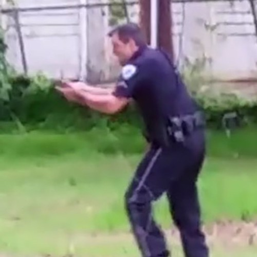 Frame 394': The Shooting of Walter Scott, Viral Videos, and