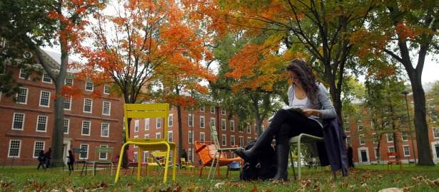 615 harvard lawn fall college university.jpg