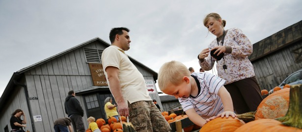 615 pumpkin boy family parent.jpg