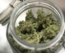 615_Marijuana_Reuters.jpg