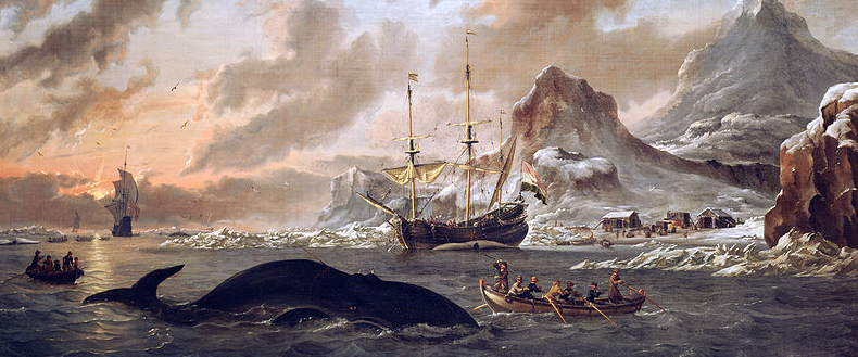 The Spectacular Rise and Fall of U.S. Whaling: An Innovation Story - The Atlantic