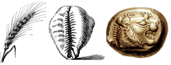 Thumbnail image for history of money.png