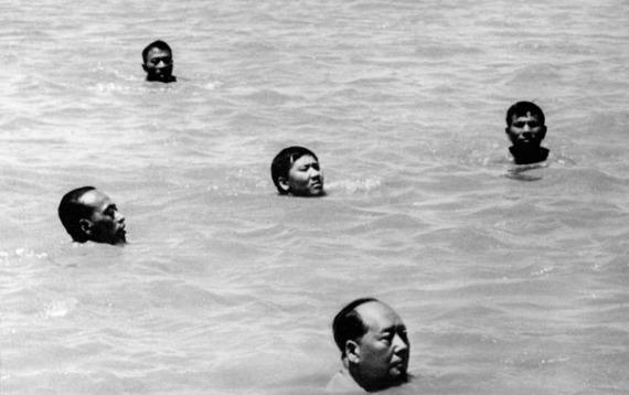 maoswimming.jpg