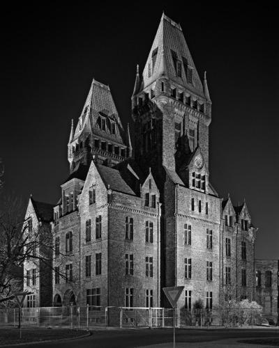 Buffalo_Night_gray_vertical.jpg