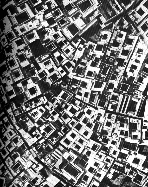 architecturewithoutarchitects4.jpg