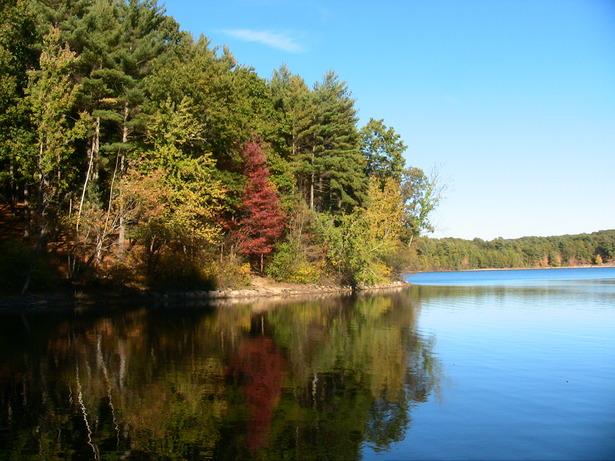 autumn tints walden pond.jpg