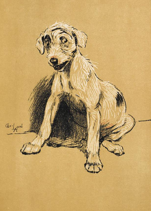 dogsinbooks11.jpg