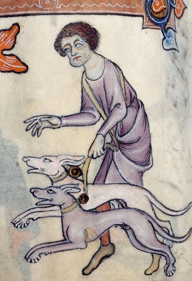 dogsinbooks2.jpg