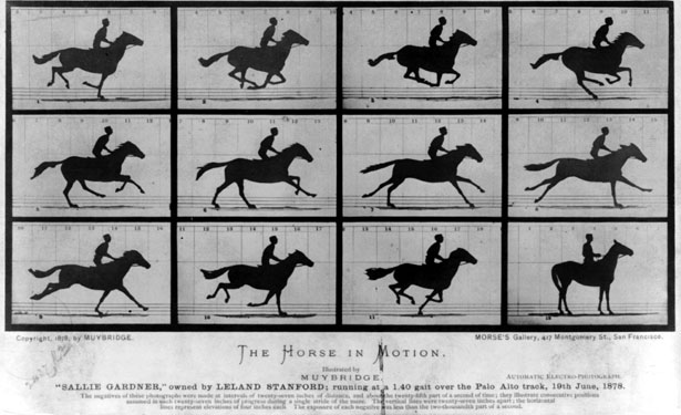 The_Horse_in_Motion-615.jpg