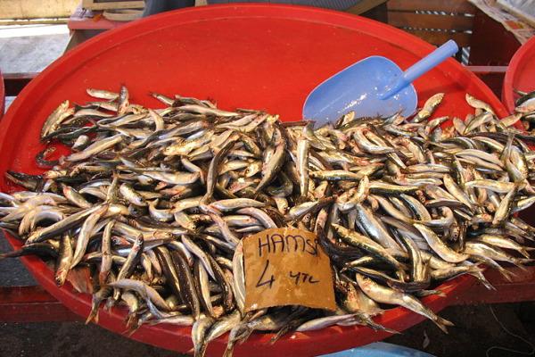 anchovies_cut.jpg