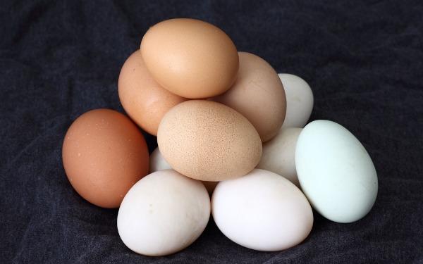 eggs_johnloo_wide.jpg