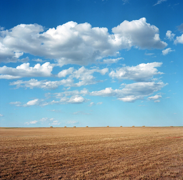 Hay field, Butte County, SD copy.JPG