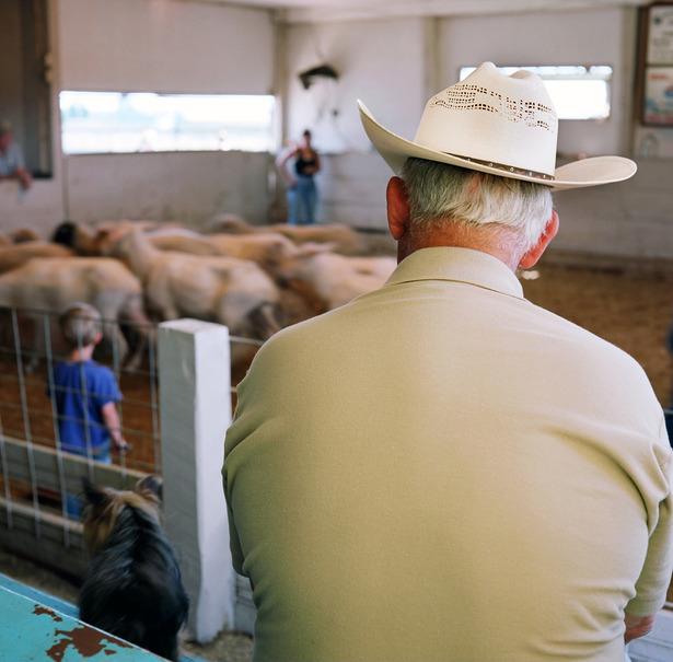 Sheep auction, Newell, SD copy.JPG