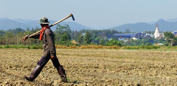 FarmerField-Shutterstock-Post.jpg