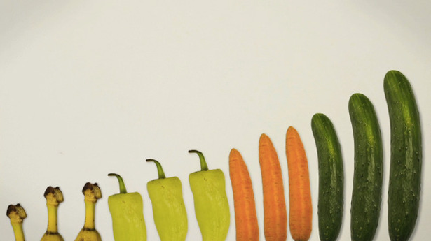2-foodrules1.jpg