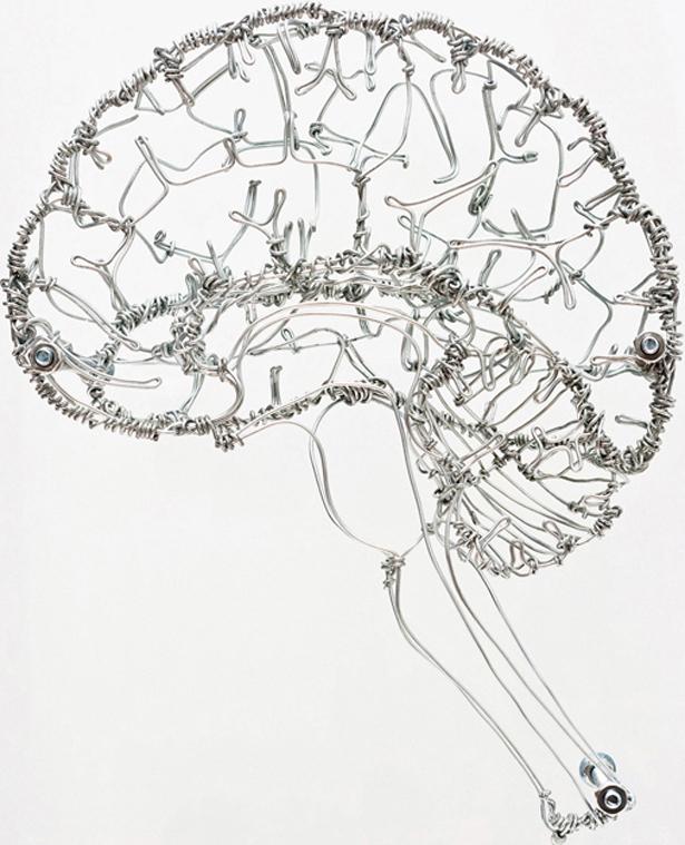 Federico-Carbajal-brain.jpg