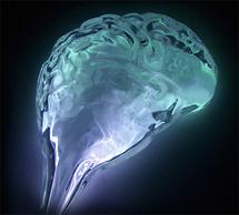 brain-neon1.jpg