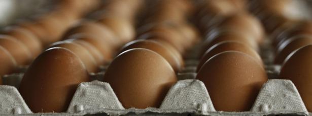 eggs615.jpg