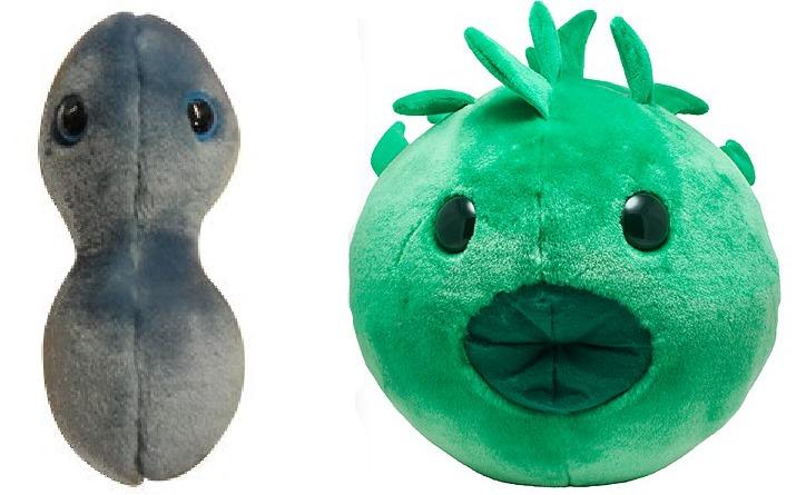 giant microbes plush toys.jpg