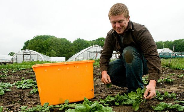 organic farm-615.jpg
