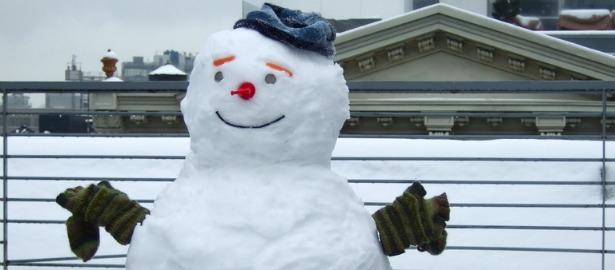 snowgut6152.jpg
