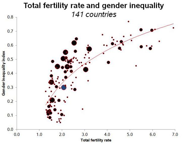 cohen fertility 1.jpg