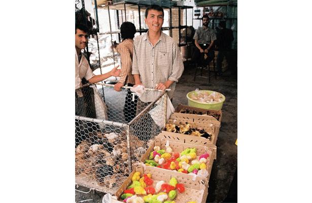 Bird-Market--Esfahan-3.png