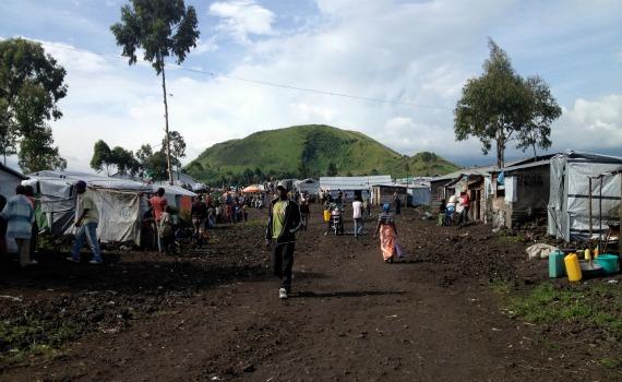 DRC 7.jpg