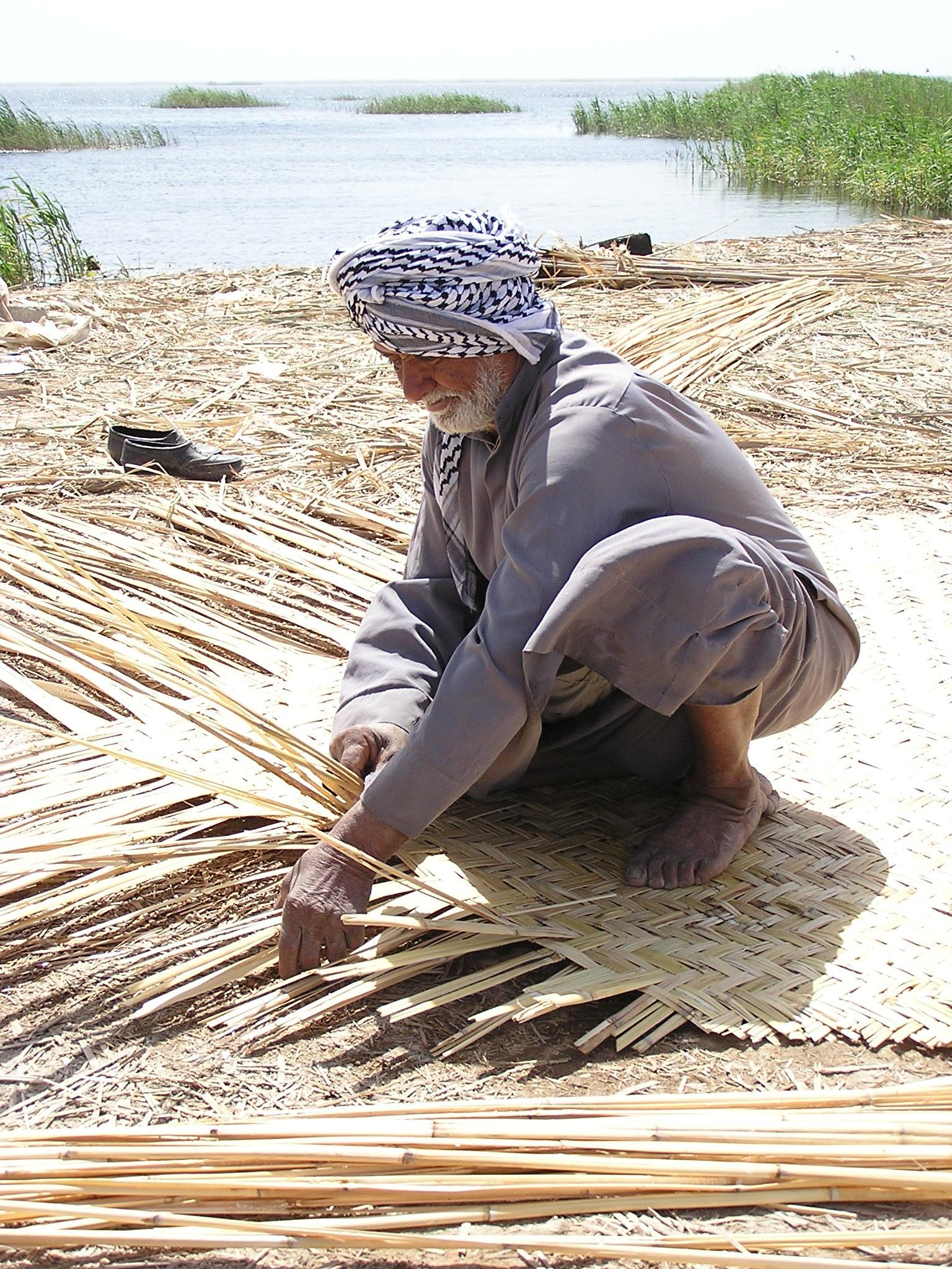 Making_Reed_Mats.Mudhafar_Salim,_Nature_Iraq.JPG