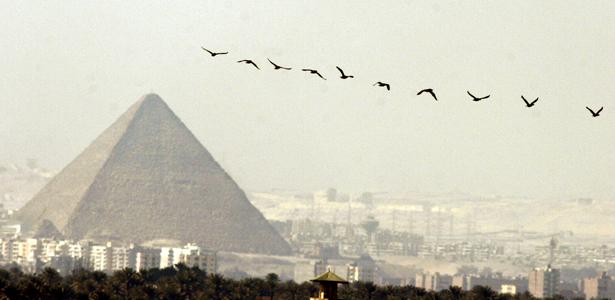 avEgypt may11 p.jpg