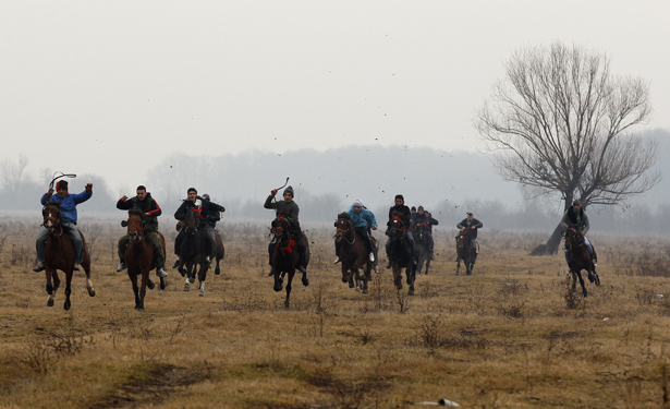 horsepiphany1.jpg