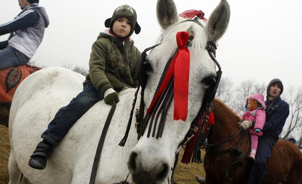horsepiphany3.jpg