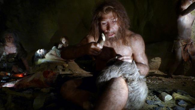 neanderthal-banner.jpg