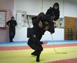 ninjawomen1.jpg