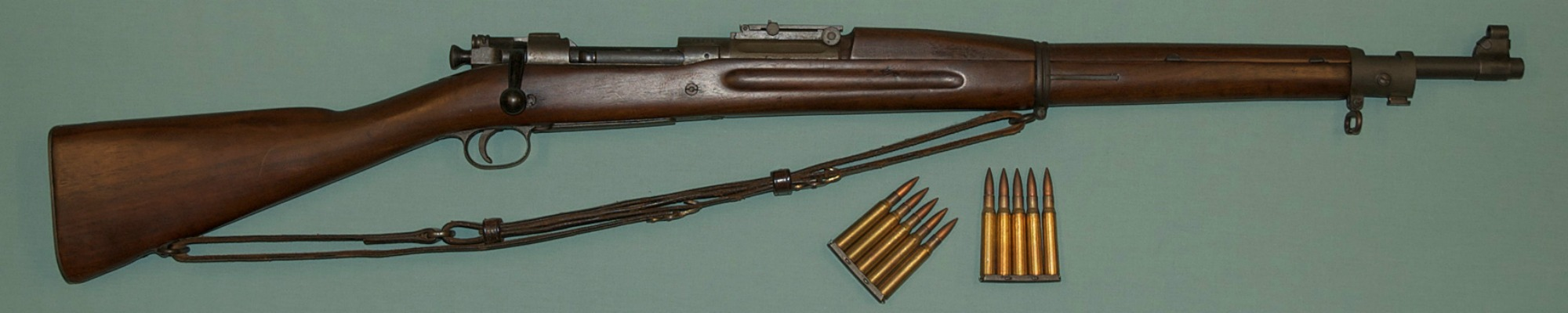 springfield rifle for article.jpg