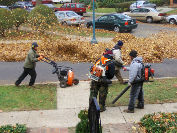 LeafBlower.png