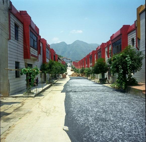 haiZhang.png