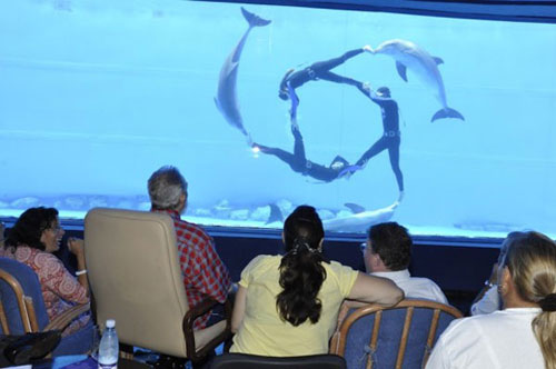 fidel-castro-on-another-trip-the-national-aquarium-2010-09-01.jpg