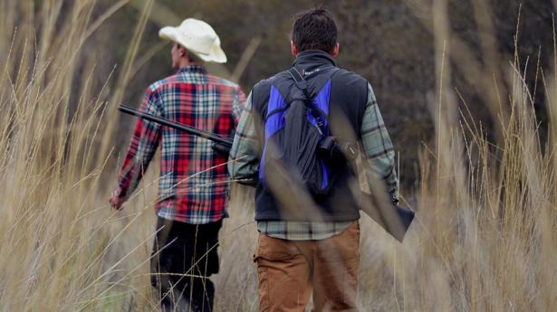 hunters-grass.jpg