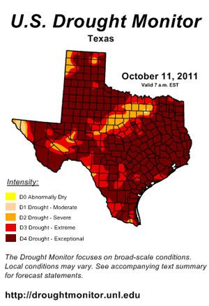 texas drought -drought copy.jpg