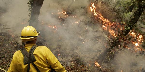 Forest fireman - Robert Galbraith Reuters - banner.jpg
