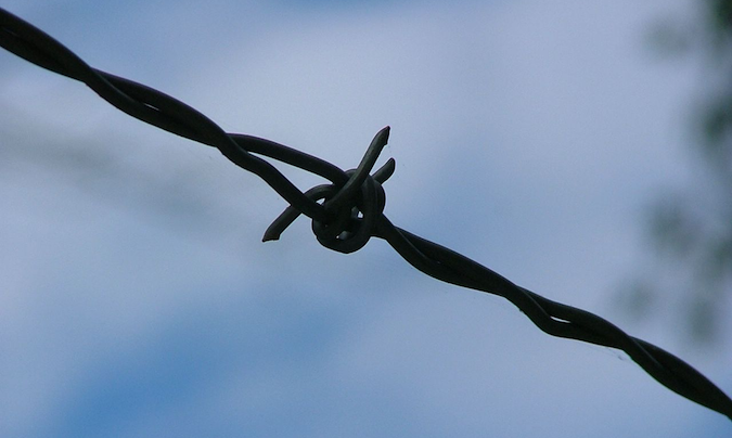 barbed wire.png