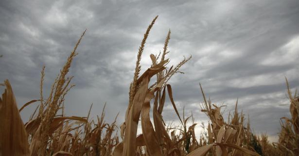droughtban.jpg