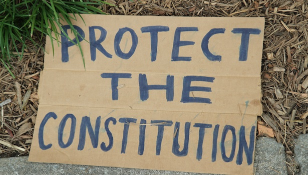 protect the constitution.jpg
