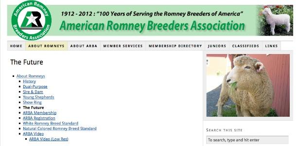 romneybreeders.banner.jpg