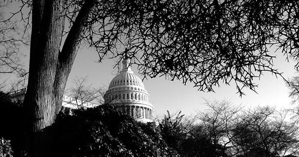 798px-Capitol_Building-615.jpg