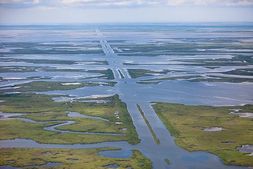 TED wetland pipelines.jpg