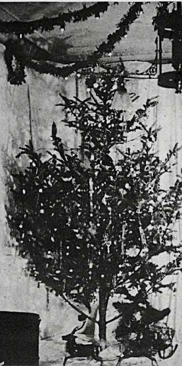 first-electric-tree2.jpg