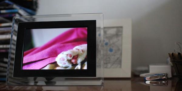 DigiPhoto-laihiuFlickr-Post.jpg